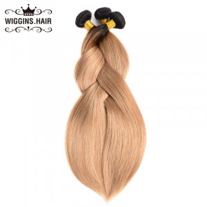 3 Bundles Human Hair Weft Top Selling Straight Hair Ombre 1B/27 Color
