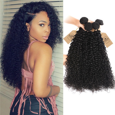 Brazilian Virgin Hair Curly Weave 100% Human Hair Weave 4 Bundles