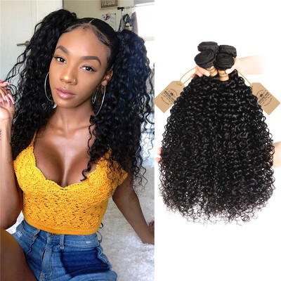 Peruvian Curly Wave Weave Human Hair 4 Bundles Virgin Hair