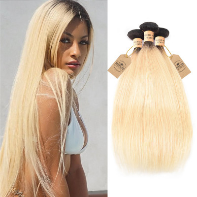 Brazilian Straight Virgin Human Hair Ombre Color 1B/613 3 Bundles